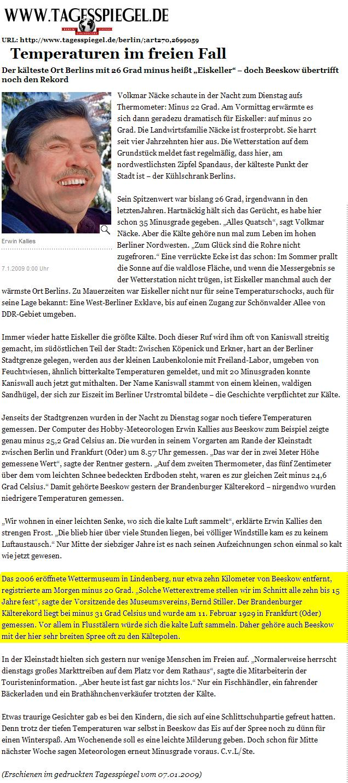 Tagesspiegel Online Screenshot
